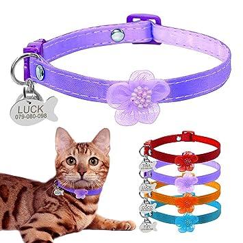 BERRY Breakaway - Collares para Gato con Campana - Etiquetas de identificación para Mascotas con Placa de Nombre - Collar Personalizado de Nailon para Gatos ...