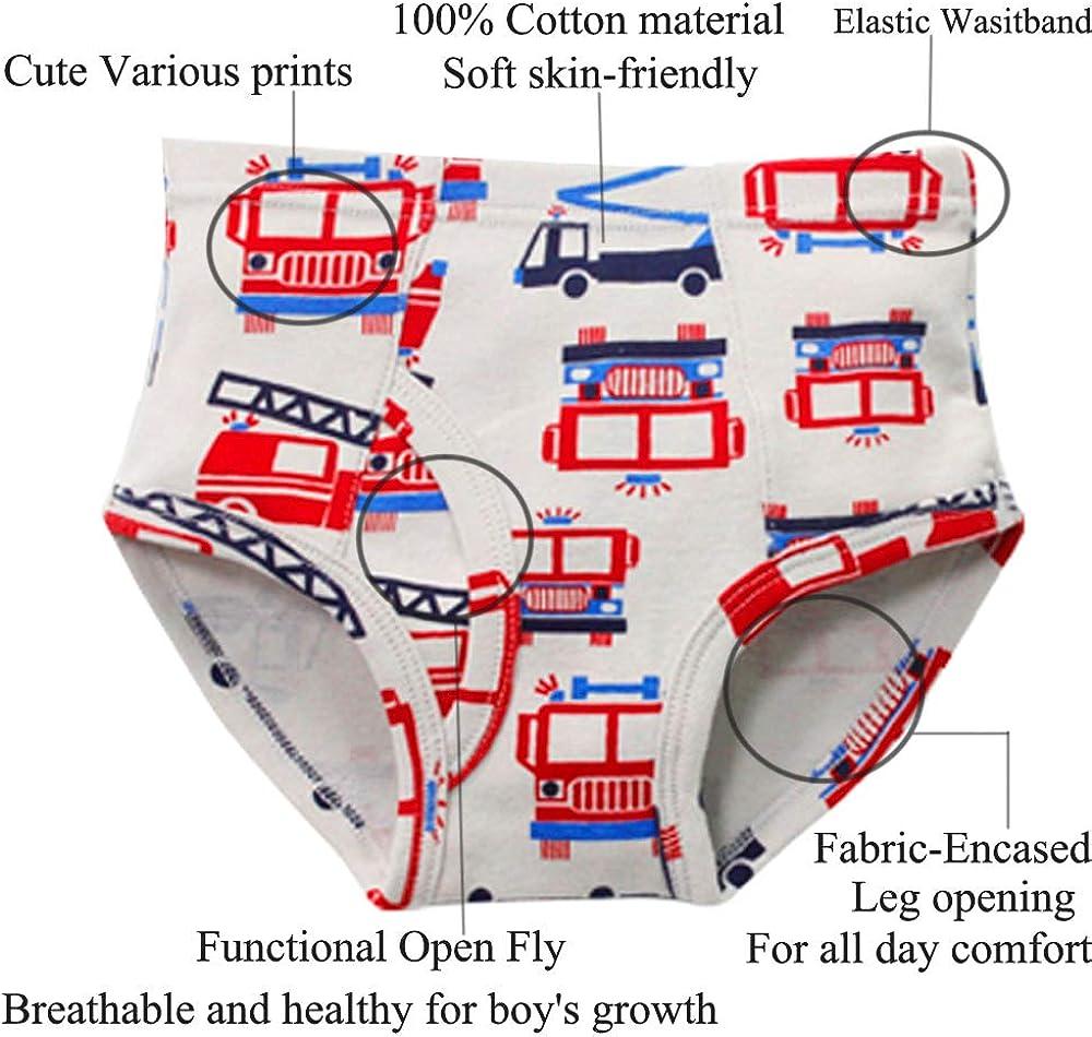 Pack of 6 Kidear Kids Series Soft Cotton Underwear Little Boys Assorted Briefs