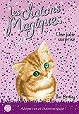 1. Les chatons magiques : Une jolie surprise (01)