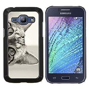 EJOOY---Cubierta de la caja de protección para la piel dura ** Samsung Galaxy J1 J100 ** --gato lindo gatito curioso shorthair negro