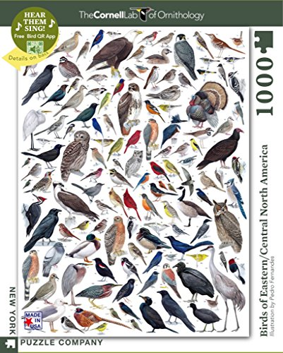 New York Puzzle Company - Cornell Lab Birds of Eastern/Central North America - 1000 Piece Jigsaw Puzzle