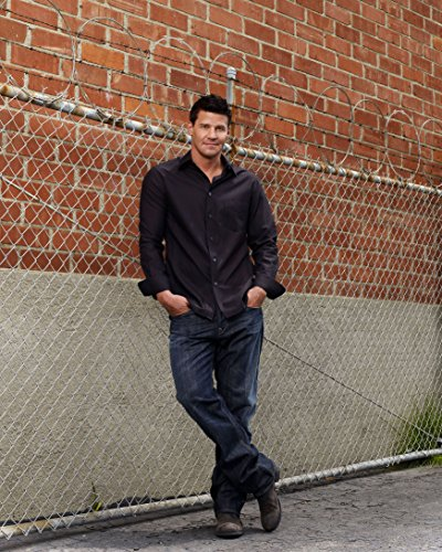 Celebrity Photo #19 (David Boreanaz Poster)