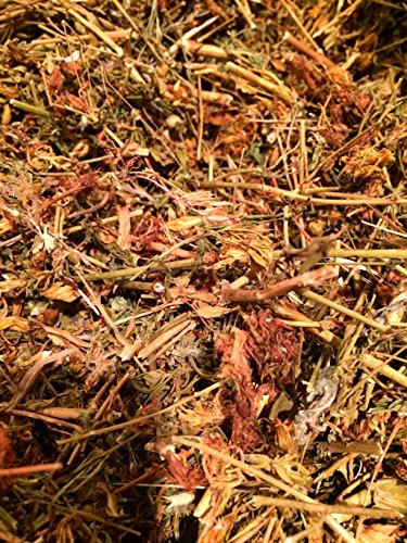 Organic Bio Herbs-Organic Dried St. John's Worth (Hypericum Perforatum) 2 Oz.