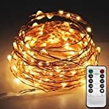 Tools & Hardware : Twinkle Star 33ft 100LED Copper Wire String Lights Fairy String Lights 8 Modes LED String Lights USB Powered with Remote Control for Wedding Party Home, Warm White
