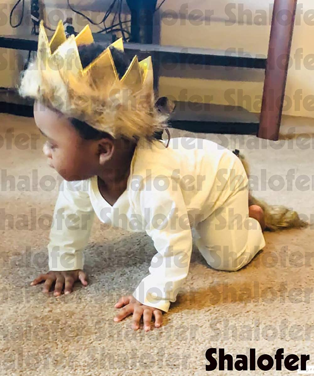 Baby Birthday Photography Outfit Set Lion Costume Romper with Crown and Tail