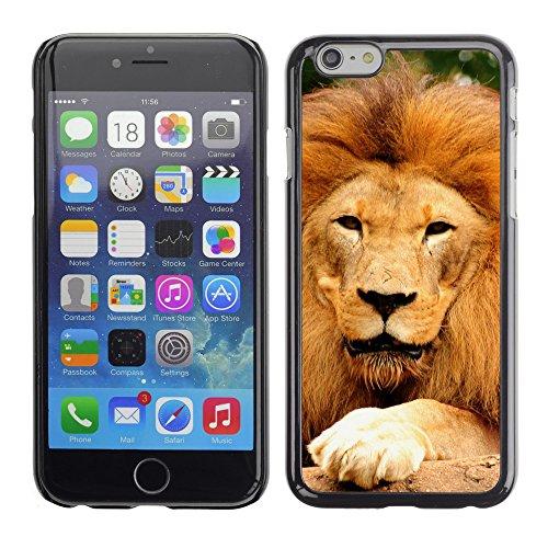 "Premio Sottile Slim Cassa Custodia Case Cover Shell // V00003942 lion fatigué // Apple iPhone 6 6S 6G PLUS 5.5"""