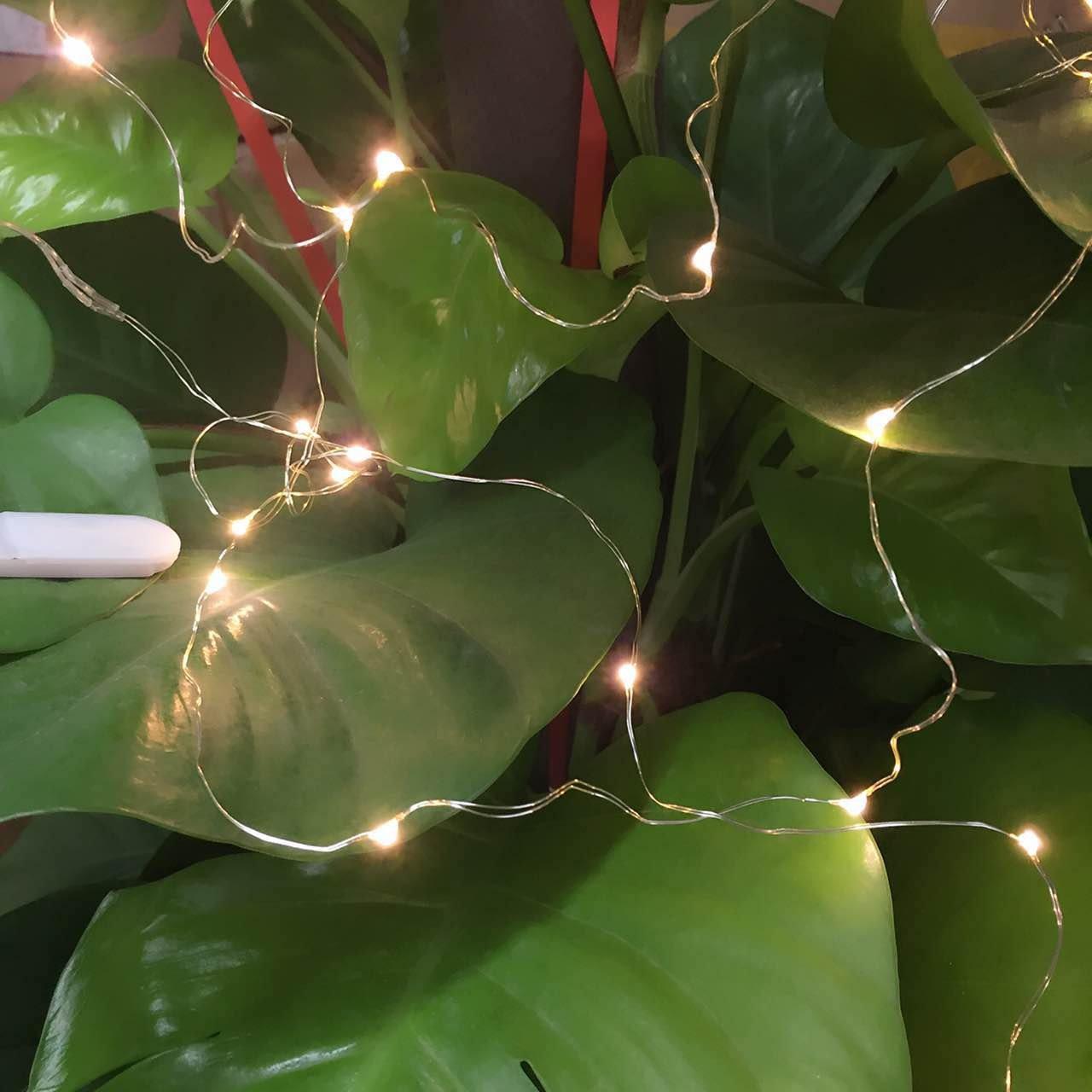 6 Stück Flaschenlicht Lichterketten warm weiß 78in(200cm) LED ...