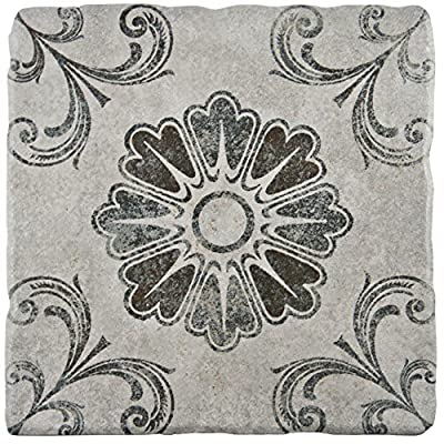 "SomerTile FEB8CCD3 Cana Cendra Ceramic Floor and Wall Tile, 7.75"" x 7.75"", Grey/Blue/Brown"