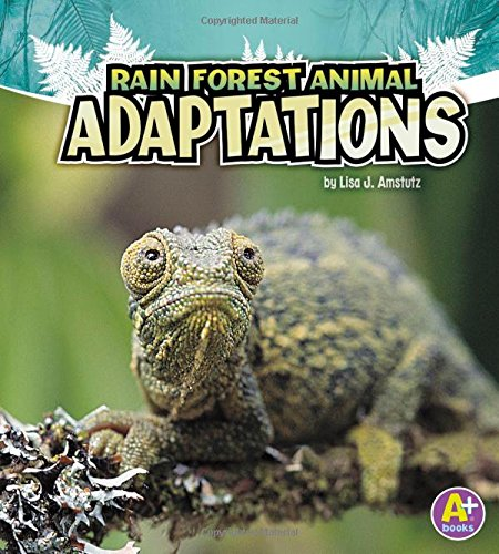 Rain Forest Animal Adaptations (Amazing Animal Adaptations) pdf