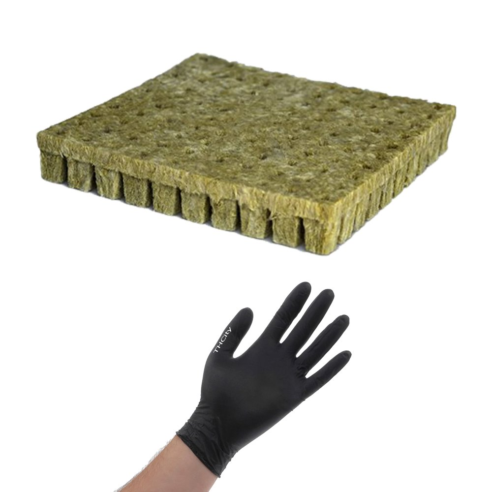 Grodan Stonewool Starter Cubes with THCity Gloves, Rockwool, 100 Sheets