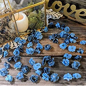 Wedding Sweetheart Table Decor, Rustic Bridal Shower Decorations, Table Setting Ideas for Party, Artificial Baby's Breath, Dusty Blue Flower Confetti 100