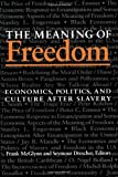 The Meaning of Freedom : Economics, Politics, and Culture after Slavery, , 0822954796