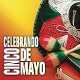 Celebrando Cinco De Mayo