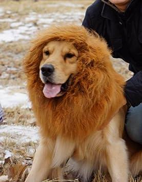 Gran Peluca de Animal Perro Gato Leon Para disfrazes de Hallowen Navidades y otras fiestas con
