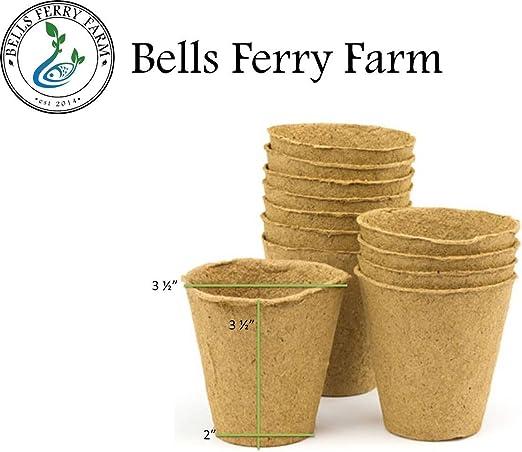 Orgánico semillas, madera de semillas bandejas de macetas o Ormi ...