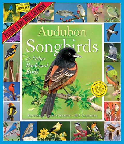 Audubon Songbirds & Other Backyard Birds Picture-A-Day Wall Calendar 2017