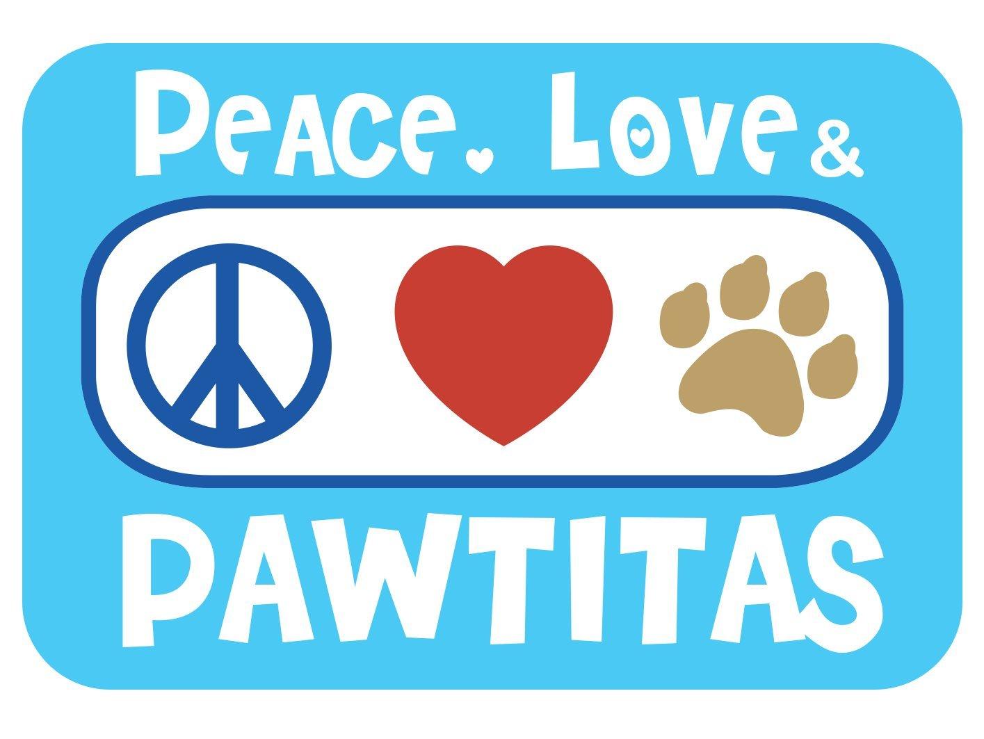 Pawtitas Multicolor Step In Dog Arn/és o Chaleco de arn/és Entrenamiento de su arn/és para Cachorros arn/és peque/ño Rosa//Azul//Turquesa//Verde