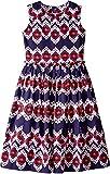 Oscar de la Renta Childrenswear Baby Girl's Ikat Cotton Gathered Skirt Party Dress (Toddler/Little Kids/Big Kids) Navy/Cherry Dress