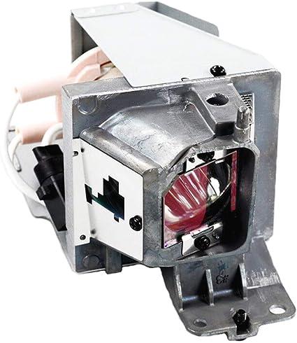 ghdonat.com Lanwande BL-FU195B Replacement Projector Lamp Bulb ...