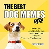 The Best Dog Memes Ever: The Funniest Relatable Memes as Told by Dogs