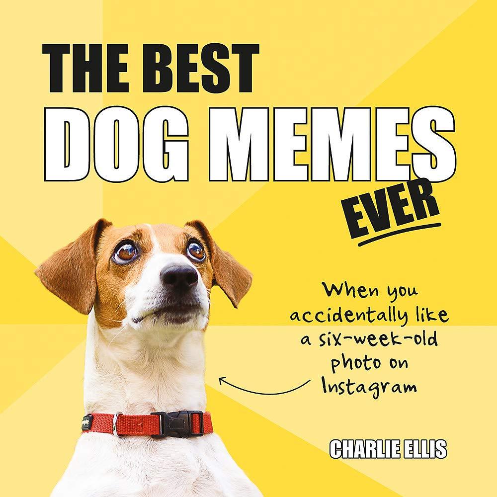 The Best Dog Memes Ever The Funniest Relatable Memes As Told By Dogs Amazon De Ellis Charlie Fremdsprachige Bucher