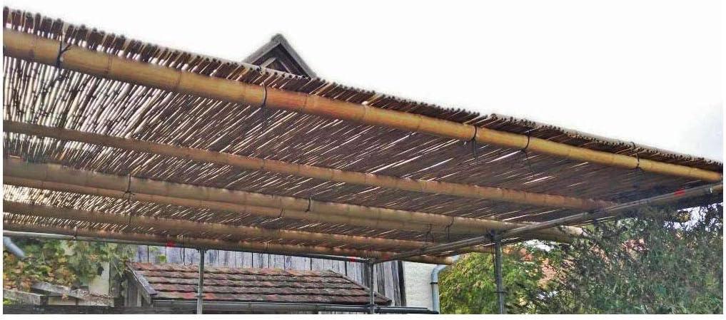 Cañas de bambú amarillas decoloradas de 4, 5 – 6 cm de diámetro y 200 cm de largo.: Amazon.es: Jardín