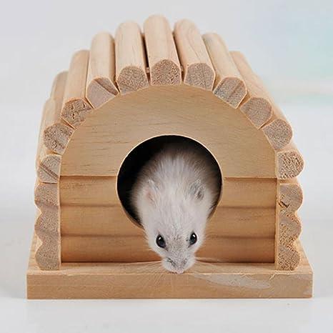 Steellwingsf Caseta de Madera Dividida Resistente con Diseño de Ardilla Pequeña Cavia Hamster
