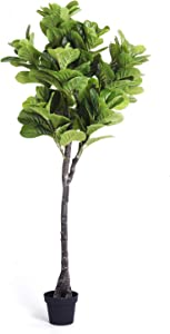 Homelux Theory Fiddle Leaf Fig Tree Artificial Plant Decor for Bedroom, Office Decor, Home Decor, Bathroom Decor, and Living Room Decor. Tall Fake Tree Looks Real. Ficus Tree Faux Plant(6 FT, 1 Stem)