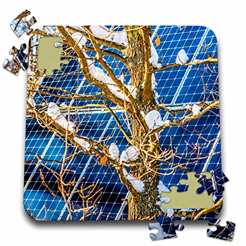 3dRose Alexis Photography - Objects - Young snow covered oak tree and a solar power panel in winter park - 10x10 Inch Puzzle (pzl_280889_2) -