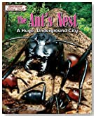 The Ant's Nest: A Huge, Underground City (Spectacular Animal Towns)