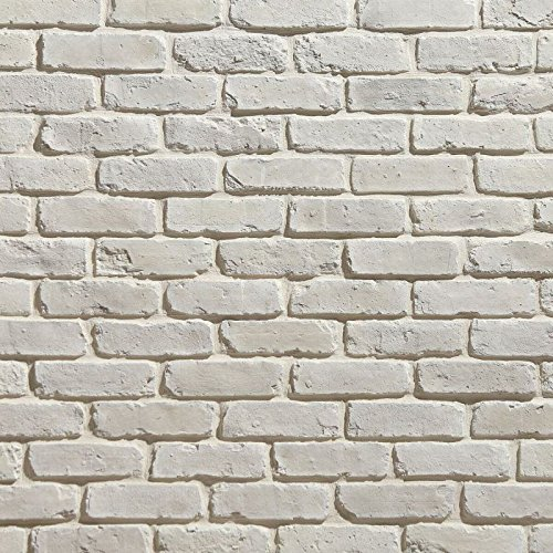Koni Brick Old Chicago Blanc 10.76 sq. ft. Flats 0.65 in. x 8.20 in. x 2.50 in. Thin Brick (Fireplace Brick Old)