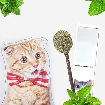 LIUQIAN Menta de Gato Lollipop Tease Gato Palo molares JIE Diente Tian Polygonum Gato Hierba Gato