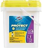 Clorox Pool&Spa pH Protect, 16-Pound 18016CLX