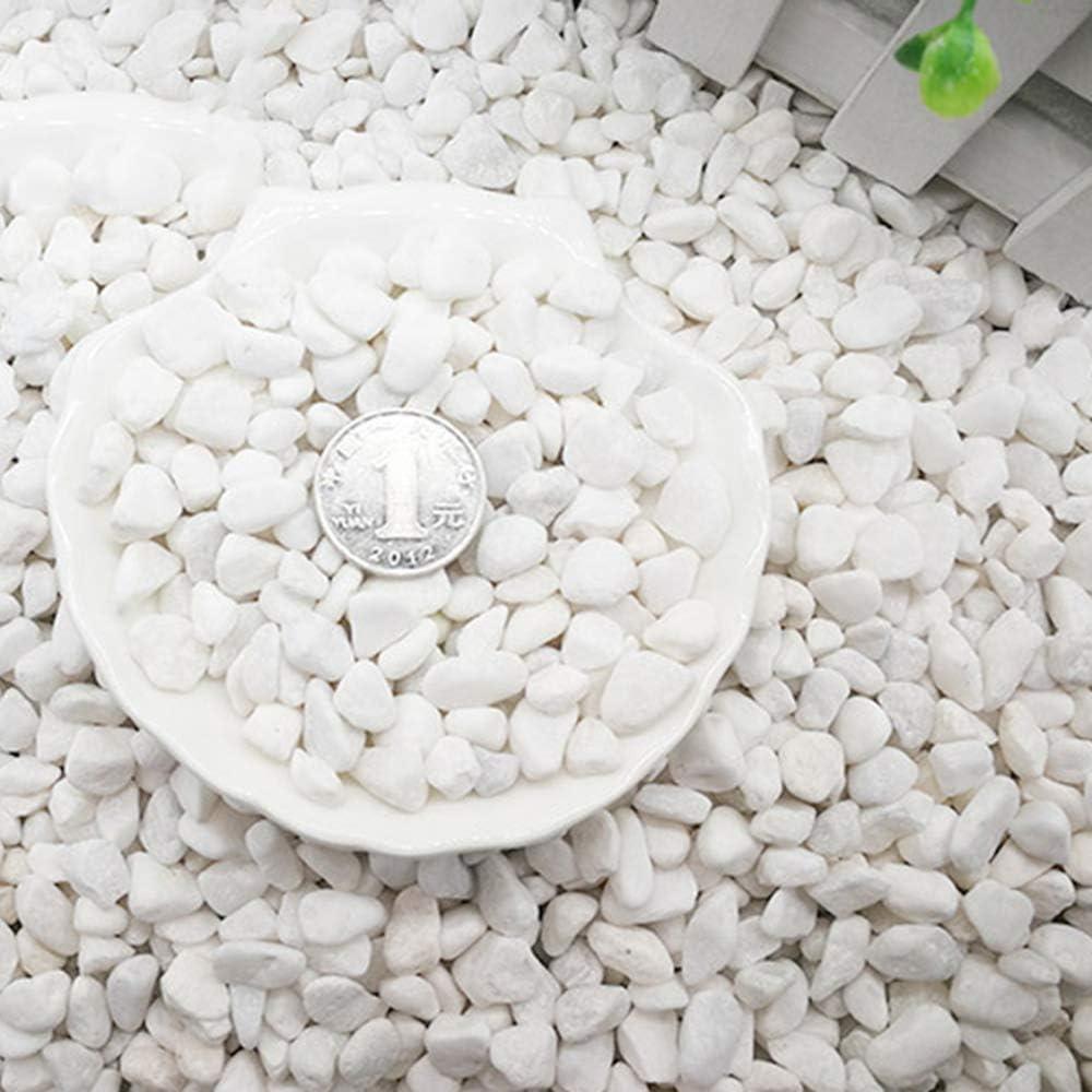 XTXWEN Piedra Blanca Natural, Decorada con Piedra Blanca Original, Decoración De Paisajismo De Acuario, Pavimentación De Piedra En Maceta, 500G / Bolsa,XS