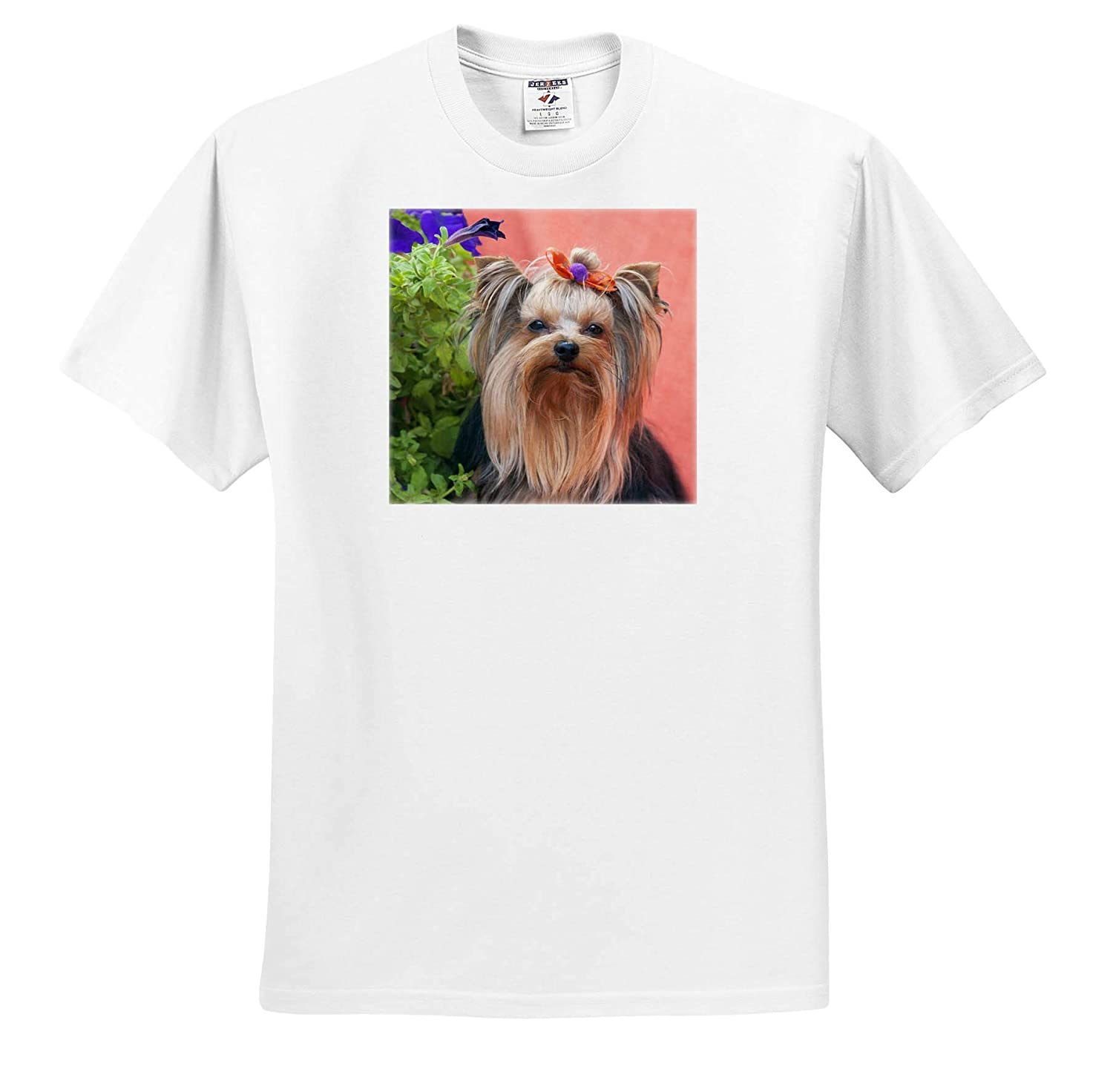 3dRose Danita Delimont ts/_314006 Yorkshire Terrier with Potted Flowers Adult T-Shirt XL Dogs