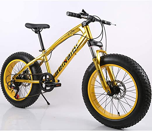 Link Co Frenos de Disco cambiantes de 20 Pulgadas Bicicleta de ...