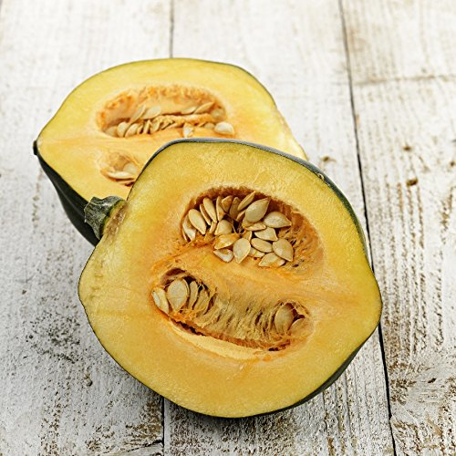 Squash (Winter) Seeds - Acorn Table Queen - 1 Pound, Vegetable Seeds -