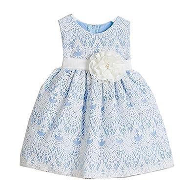 80c7b7cf94 Sweet Kids Baby Girls Light Blue Vintage Lace Overlay Flower Girl Dress 6-9M