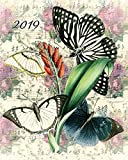 2019 Weekly & Monthly Vintage Butterfly: 12 Month