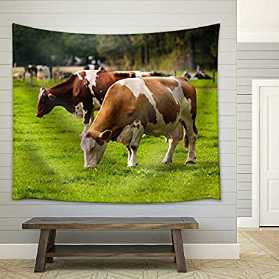 Pretty Expertise, Created Just For You, Cows on Meadow Grazing Calves Fabric Wall