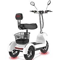 SZ-DDC Triciclo de Scooter eléctrico de Tres Ruedas
