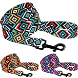 CollarDirect Aztec Dog Leash Nylon Tribal Pattern Cat Pet Leashes for Small Medium Large Dogs Puppy Lead 5 FT Long for Walking (Ethnic Teal, S)