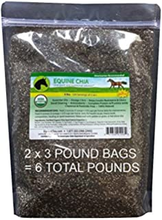 Equine Chia Brand - 6 Pounds of Certified Organic Chia Seeds in 2 x 3 Pound