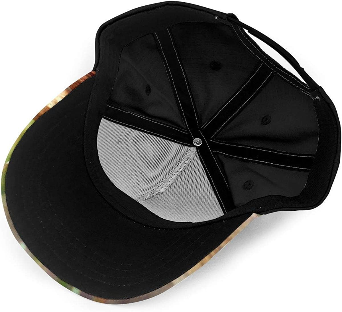 Squirrel Cut The Nut Lightweight Unisex Baseball Caps Adjustable Breathable Sun Hat for Sport Outdoor Black