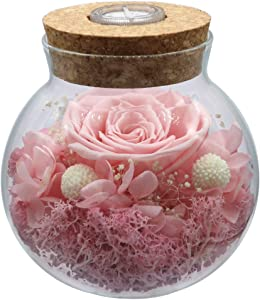 Preserved Real Roses with Colorful Mood Light Wishing Bottle,Eternal Rose,Never Withered Flowers,for Bedroom Party Table Decor, Christmas Decorations,a Gifts for Women Pink