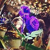 DarkSteve - Violet Decorative Light Bulb - Edison