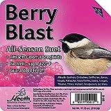 Heath Outdoor Products DD-15 Berry Blast Suet Cake, Case of 12