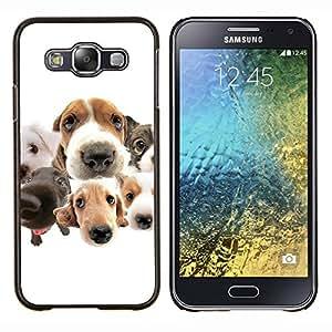 EJOOY---Cubierta de la caja de protección para la piel dura ** Samsung Galaxy E5 E500 ** --Beagle Labrador Retriever Perros Raza