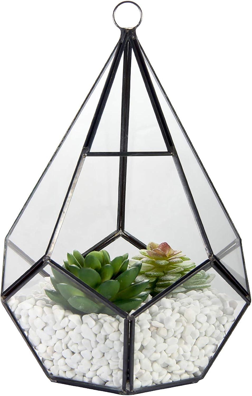 Glass Geometric Terrarium Container, ZOUTOG 6.7'' Air Plant Holder Window Sill Decor Shelves, Succulent Plant Cacti Fern Flower Pot Container, Geometric Decor for Air Plant, Diamond Shape