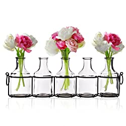 Small Bud Glass Vases in Black Metal Rack Stand, Window-Sill Display Set of 5 Crystal Clear Flower Vase, Decorative Centerpiece for Home or Wedding